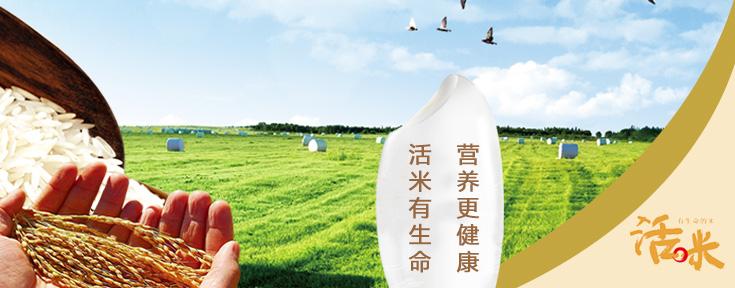 匯法網旗下的九不欺,瓜果鮮蔬|地方特產|優質品質|食品綜合類電商平臺